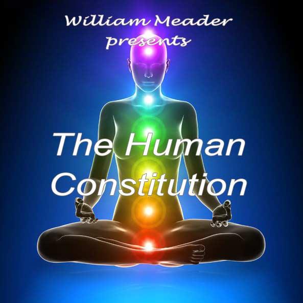 Human-Constitution